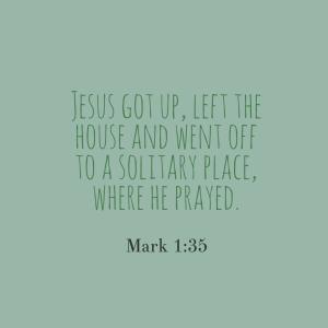 mark135